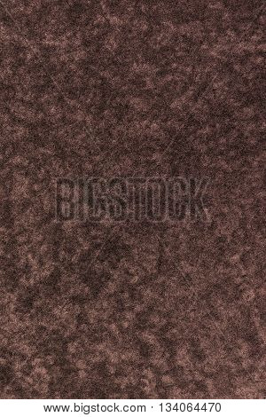 Artificial fur texture. Useful as background for design-works.