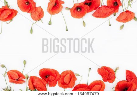 Heads of red poppies on the bottom and on top of white background top view