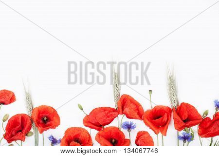 Heads of red poppies rye and cornflowers on the bottom of white background flat lay