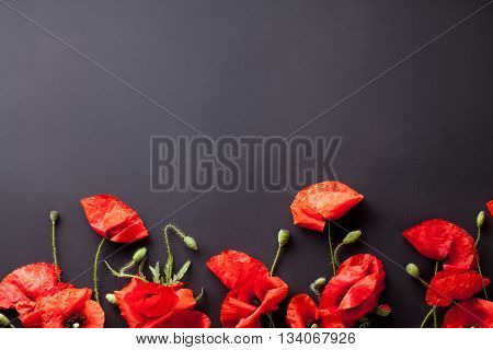 Heads of red poppies on the bottom of black background flat lay