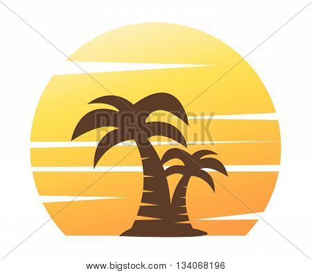 palm tree image vector illustration on white