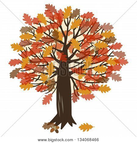 Vector illustration with the image of the oak tree and falling autumn leaves