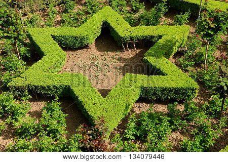 garden of Alhambra, Grenada, Andalusia , spain