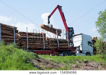 Glenariff Forest Park Northen Ireland- june 06 2016. Crane operator loading logs on to truck