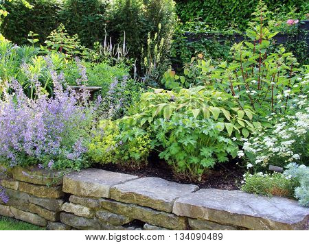 Perennial flower bed in summer.