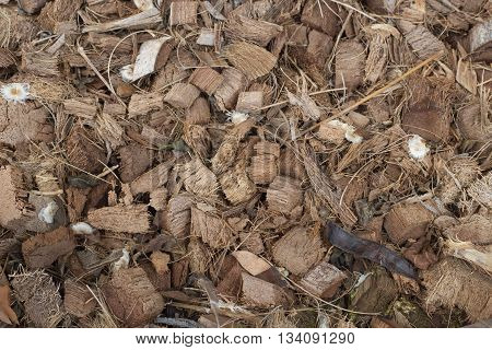 Background coconut husk. Brown background. Texture background