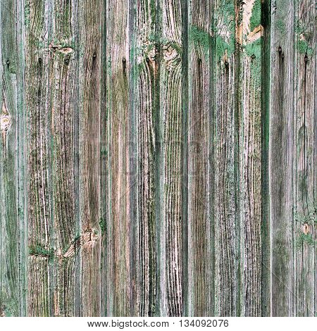 Old Shabby Wooden Thin Planks with Cracked Green Color Paint Background