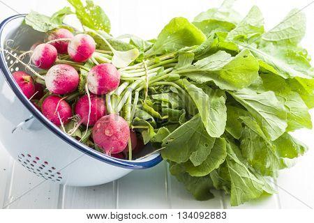 Fresh radishes in colander. Red radishes vegetable.