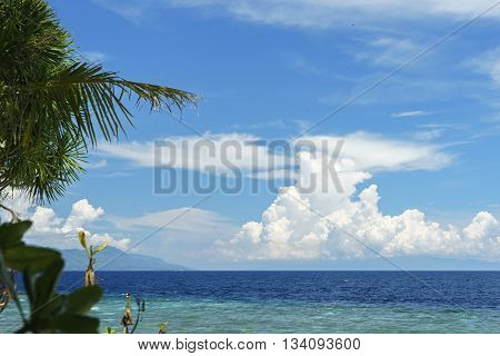 Seaview with palm leaf and cloudy blue sky