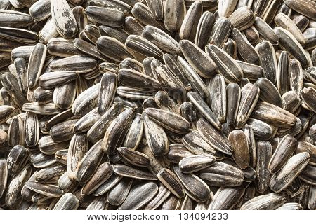 Texture of unpeeled sunflower seeds. Sunflower seeds are healthy superfood.