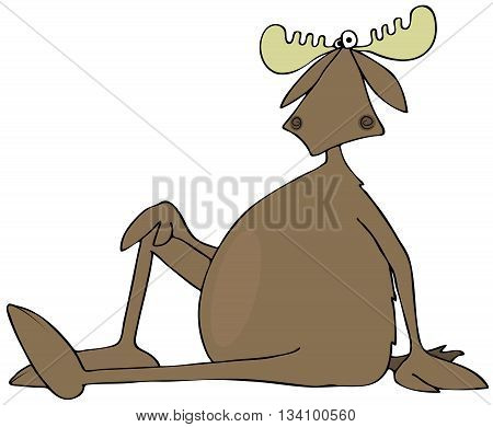 Illustration of a bull moose sitting on the ground with one leg up, bent at the knee.