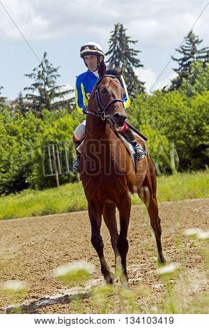 Before horse race in Nalchik, Northern Caucasus,Russia.