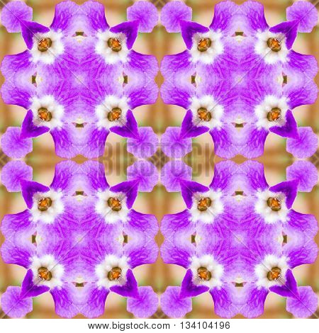 abstract pattern of purple flowers with a kaleidoscope effect. for greetings or wrapping paper