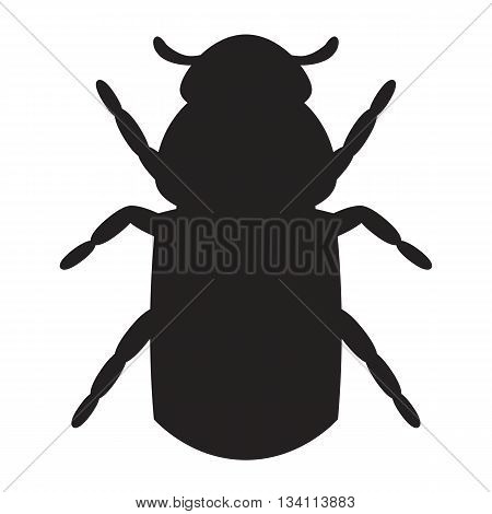 Icon bark beetle. Silhouette of a bark beetle isolated on the white background. Vector illustration.