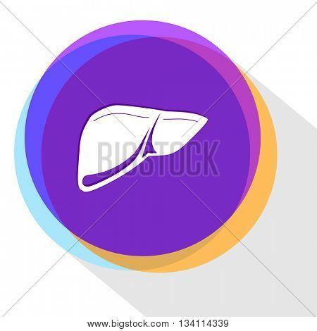 liver. Internet template. Vector icon.