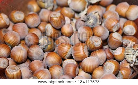 Picture of a Stack of hazelnuts. Hazelnut background