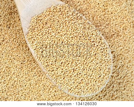 Amaranth seeds in wooden spoon on background