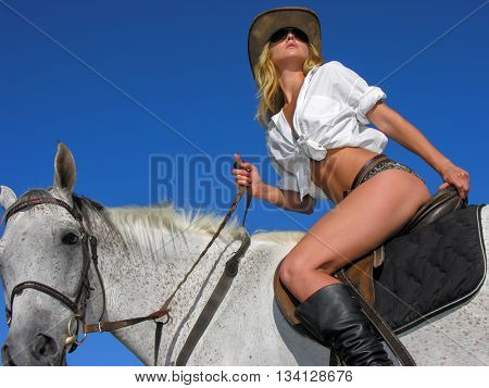 young attractive rider in the sunny day