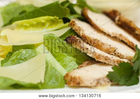 Gourmet chicken meat with green lettuce closeup