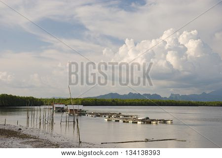 fisherman or locals have to aquaculture near the coast in the south of thailand Lifestyle southern Thailand.