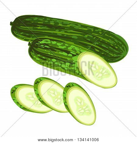 Fresh cucumber cut and sliced. Cooking illustration in modern vector style.