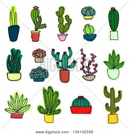 The cactus plants. Vector illustration A variety of cactus. Cactus in colorful pots. Cartoon style