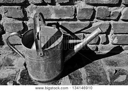 An old watering can is still useful in the garden. (monochrome image)