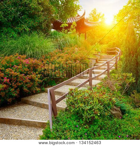 stone staircase in beautiful park at dawn