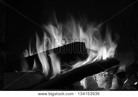 black and white photography of a campfire
