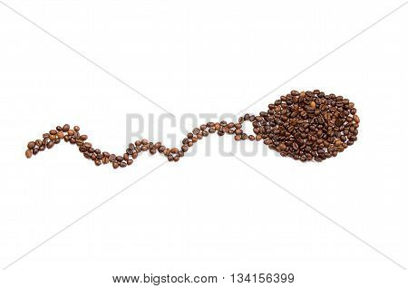 spermatozoon made of roasted coffee beans on a white background