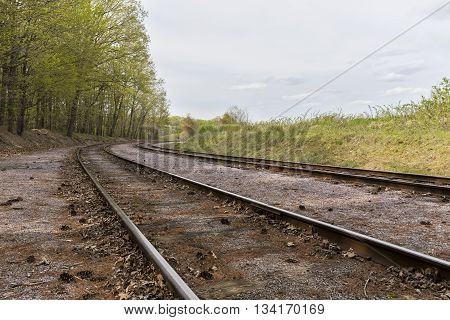 A pair of railroad tracks curving next to the woods.