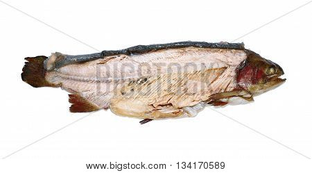 Hot smoked fish trout isolated on white background