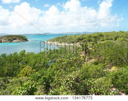 Inlet Waters of Antigua in the Caribbean
