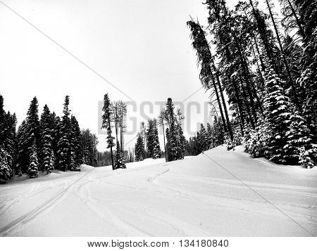 Snow skiing on thick fresh powder snow in mountains