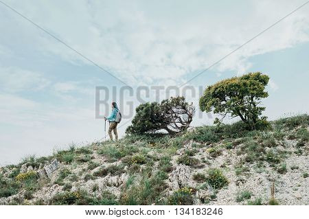 Hiker young woman with backpack and trekking poles walking in the mountains in summer
