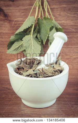 Vintage Photo, Fresh Green And Dried Lemon Balm In Mortar, Herbalism, Alternative Medicine