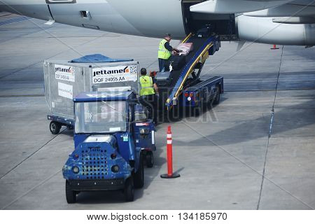 MIAMI, FLORIDA - JUNE 1, 2016: American Airlines baggage handlers uploading luggage at Miami International Airport. American Airlines operates 274 flights every day from Miami
