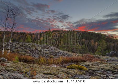 landscape with water rocks trees and moss during sundown