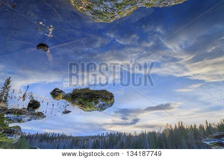 landscape with water rocks trees and moss during sundown reflected