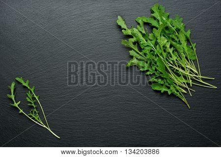 Fresh juicy arugula on a black background.