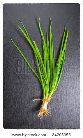 Beautiful Bunch Fresh Green Spring Onion Stalks And Roots Tied Twine On Slate Background, Close Up