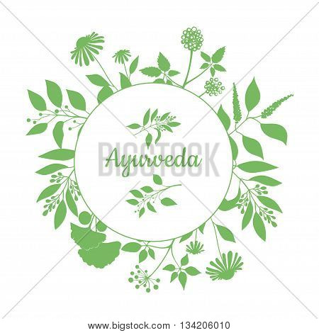 Fresh herbs store emblem. Green round frame with collection of ayurveda plants. Silhouette of branches isolated on white background