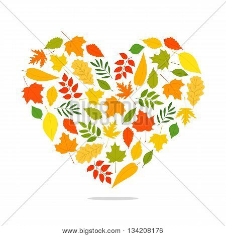 Autumn leaves from different trees in the form of a large heart. Vector illustration on white background. Elements for autumn design. Golden autumn.