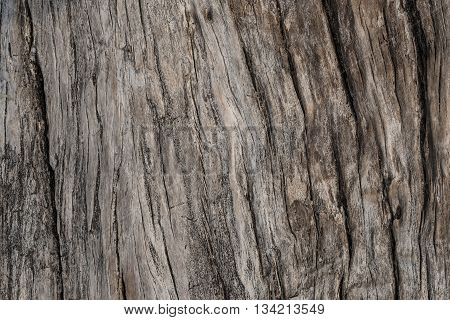Old weathered wood texture, old wood background, texture background