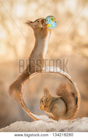 red squirrel with earth globe with squirrel beneath in a circle