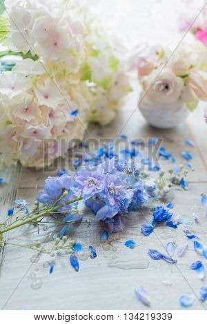 on a table in the sun and gentle pink hydrangea flower petals