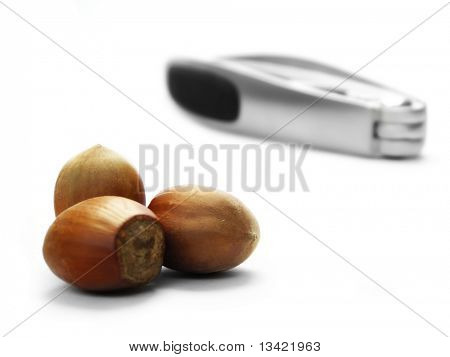 hazel nuts and cracker on white background