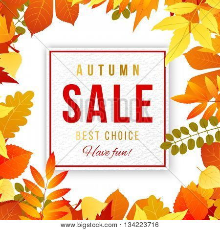 Sale banner with bright autumn leaves