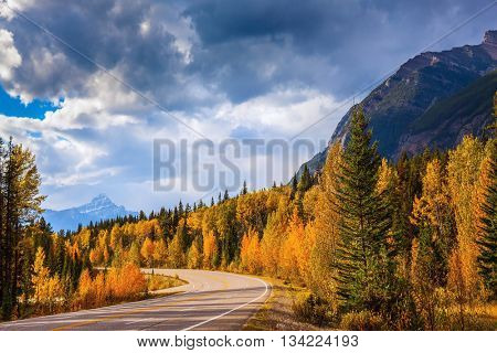 Canada, Rocky Mountains. Highway in Banff National Park. Mountains and colorful autumn forest illuminated by the sunset
