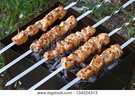 Barbecue Skewers With Meat On The Brazier. Chicken Shish Kebab